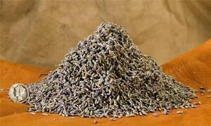 Dried-Organic-LAVENDER-Blue-Grey-Buds-from-France-Potpourri-4-Cups-4-Ounces