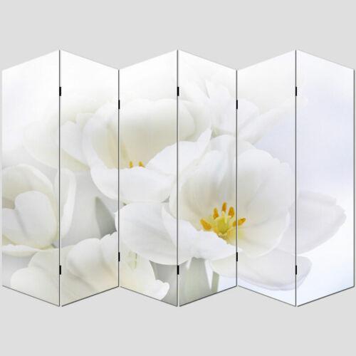 Foto-Paravent Paravent Raumteiler Trennwand H68 180x240cm Orchidee