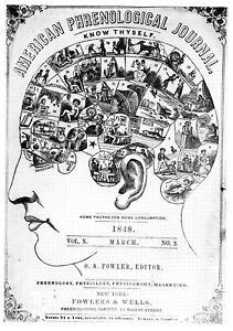 Enmarcado impresión frenología Ciencia De La Mente (imagen de cerebro humano Medicina griego)  </span>