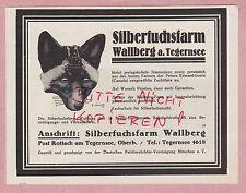 WALLBERG-TEGERNSEE, Werbung 1929, Wallberg Muster-Zucht-Silber-Fuchs-Farm Pelz