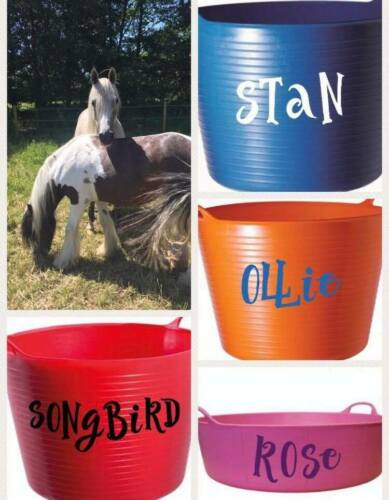 2 X  Personalised Vinyl Stickers for Horse Feed Bucket Grooming Kit