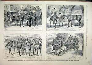Original-Old-Antique-Print-1889-Advert-Ellimans-Embrocation-Horse-Coach-Sketches