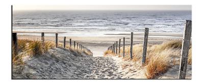 Bild Strand Meer Dünen Nordsee Leinwand  Poster XXL 40 cm*80 cm 624 Strand 2a