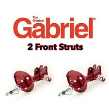 Gabriel M55896 Guardian Strut