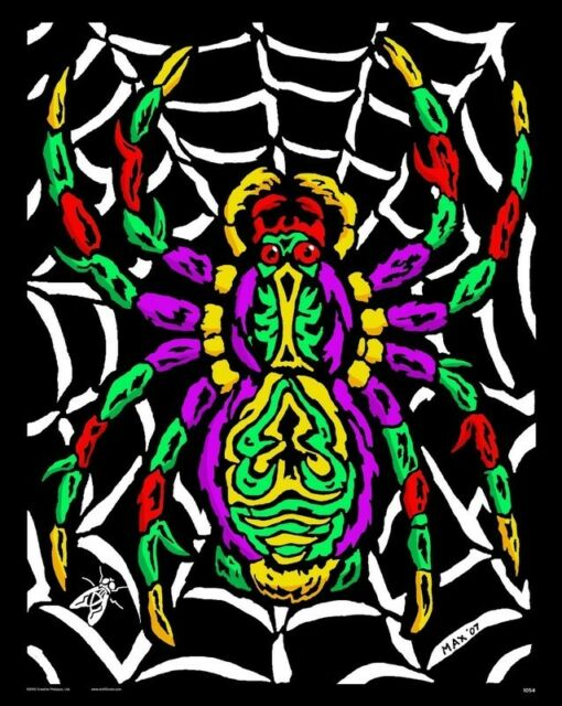 Spider - Large 16x20 Inch Fuzzy Velvet Coloring Poster