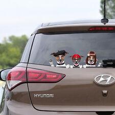 3 Cute Dogs on Board Peeking Funny Novelty Car Bumper Window Sticker Decal