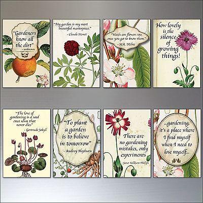 set of 8 Vintage Botanical//Horticultural seed packet fridge magnets No.2
