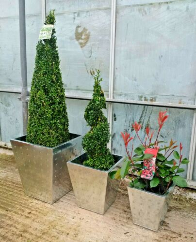 Metal plant pots with silver finish; Tapered Square shape; three piece set
