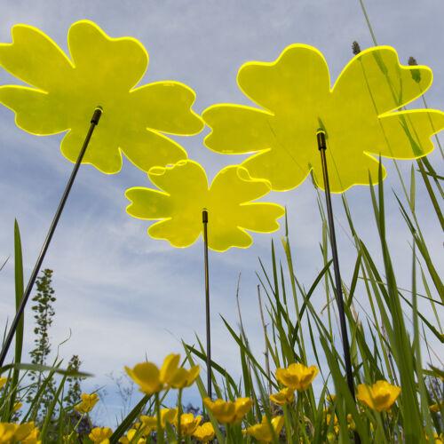 SUNPLAY Sonnenfänger Ø20cm Sets Suncatcher Gartenstecker Butterblume Farbwahl
