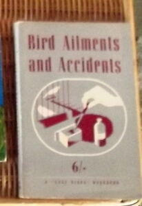 Bird-Ailments-and-Accidents