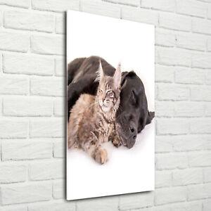 Wandbild-Kunst-Druck-auf-Hart-Glas-hochkant-70x140-Hund-und-Katze