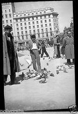Portrait jeune garçon avec les pigeons - ancien négatif photo an. 1940 - 50