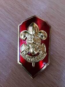 Obsolete Boy Scouts BSA Tiger Cub den Leader Award Pin Cub BSA Award