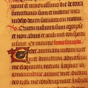 14th-cent-Latin-decorated-medieval-manuscript-GOLD-cap-Book-of-hours-psalm-RARE