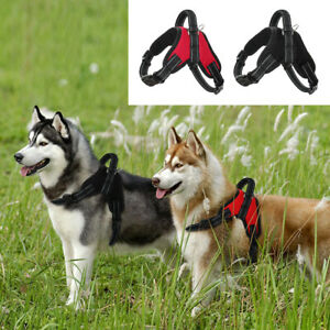Adjustable No Pull Pet Dog Harness Martingale Vest Collar for Small Large Dog