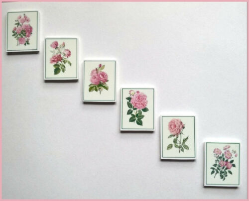 Juego 6 Flor Rosa Pretty fotos//arte de Pared para Casa De Muñecas//Sala Caja//escaleras