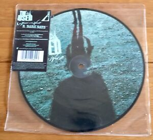 The-Used-Bird-And-The-Worm-7-034-Picture-Disc-Vinyl