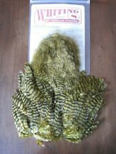 Whiting Softhackle /& Chickabou GRIZZLY dyed OLIVE