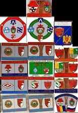 metal pin Dinamo Bucuresti Romania Bucharest