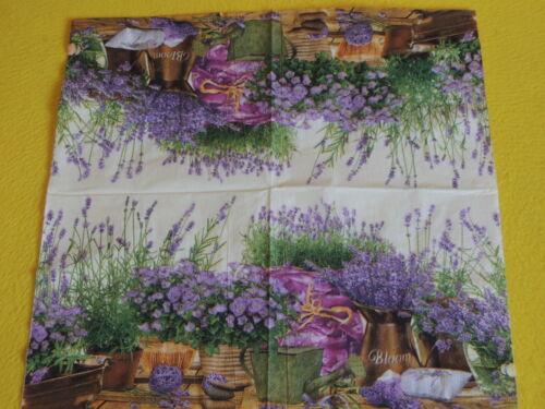 5 Servietten Lavendel Blooming lavender Serviettentechnik Motivservietten 1//2 CR