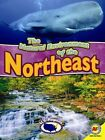 The Natural Environment of the Northeast by Blaine Wiseman (Hardback, 2014)