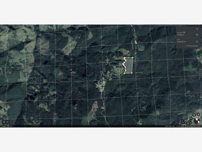 Terreno en Venta en PALZOQUIAPA