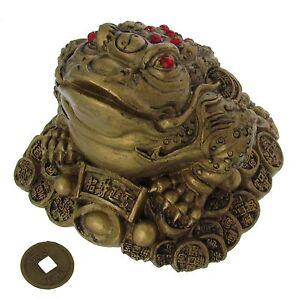 Feng shui nel Tartaruga rospo con fortuna monete Decorazione fortuna e prosperità