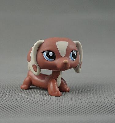 Brown Dachshund dog  LPS mini Figure toy #1631  Littlest pet shop