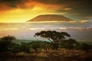 Fototapete-KILIMANJARO-350P-350x260cm-7Bahnen-50x260cm-Afrika-Tansania-Berge