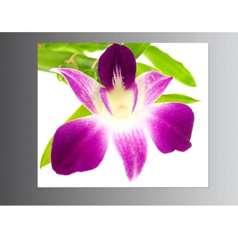 Les récompenses de bonne chance du Nouvel An sont non-stop non-stop sont Tableaux toile déco rectangle orchidée 7698964 2215d2