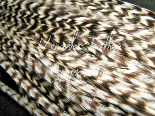 Hair Feather Extensions Natural Wholesale Grizzly Whiting Saddle 15 Wholesale