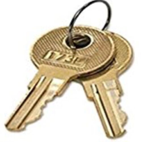 2 HON File Cabinet keys 201E-225E Keys Made By Locksmith