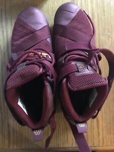 Nike Lebron James Maroon Red Shoes Men