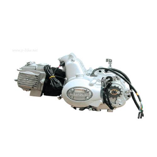 PISTON GASKET RINGS KIT FOR KAZUMA PANTERRA BAJA TAOTAO 50CC CHINESE ATV BIKE