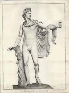 1887-The-Apollo-Belvidere-In-The-Vatican-Rome