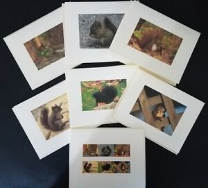Squirrels-of-the-World-Custom-Notecards-6-Pack-Blank-by-Gifted-Pet-Creations