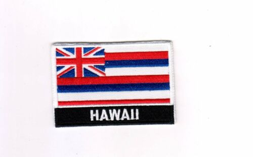 USA State United States Iron On Flag Patch Heat Seal Logo Emblem Applique