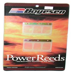 Power Reeds For 2002 Kawasaki KDX220R Offroad Motorcycle~Boyesen 607