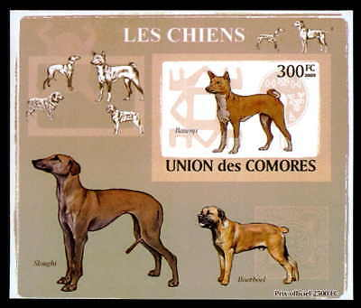 Modestil Comores Epreuve De Luxe Hunde Hund Dogs Dog Chiens Chien Deluxe Sheet Dr25 Waren Des TäGlichen Bedarfs