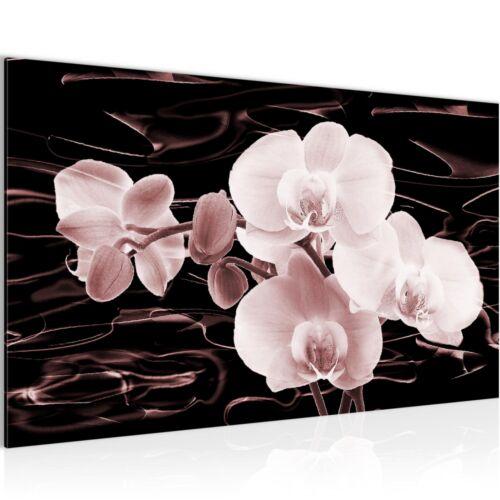 Deko Kunstdruck Leinwand aus Vlies Bild Bilder Wandbild XXL Blumen Orchidee