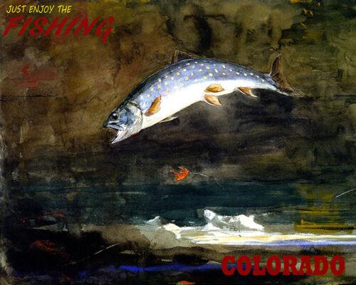 POSTER JUST ENJOY THE FISHING COLORADO BIG FISH TRAVEL VINTAGE REPRO FREE S//H