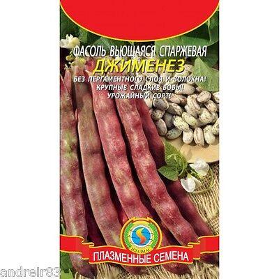 Beans seeds Bohemia Ukrainian Seeds high yielding variety Фасоль Farmer/'s dream