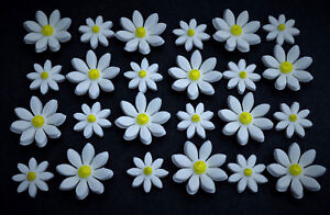 Excellent 24 Edible White And Yellow Daisy Birthday Cake Flowers Edible Funny Birthday Cards Online Elaedamsfinfo