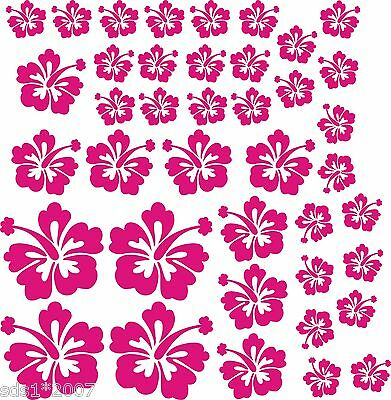 6 X FLOWER PANSIES DECALS STICKERS WALL CAR FURNITURE any flat surface HD PRINT
