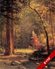 WOODLAND FOREST IN AUTUMN FALL & YOUNG DEER DOE PAINTING ART REAL CANVAS PRINT