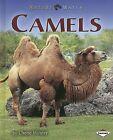 Camels by Dr Cherie Winner (Hardback, 2007)