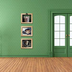 Wandtattoo-Wandsticker-Bunt-Kinderzimmer-Wohndeko-Bilderrahmen-Kaetzchen-3D-Neu