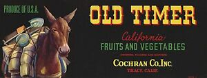 """RARE OLD ORIGINAL 1930 MINER PACK MULE """"OLD TIMER BRAND"""" LABEL TRACY CALIFORNIA"""