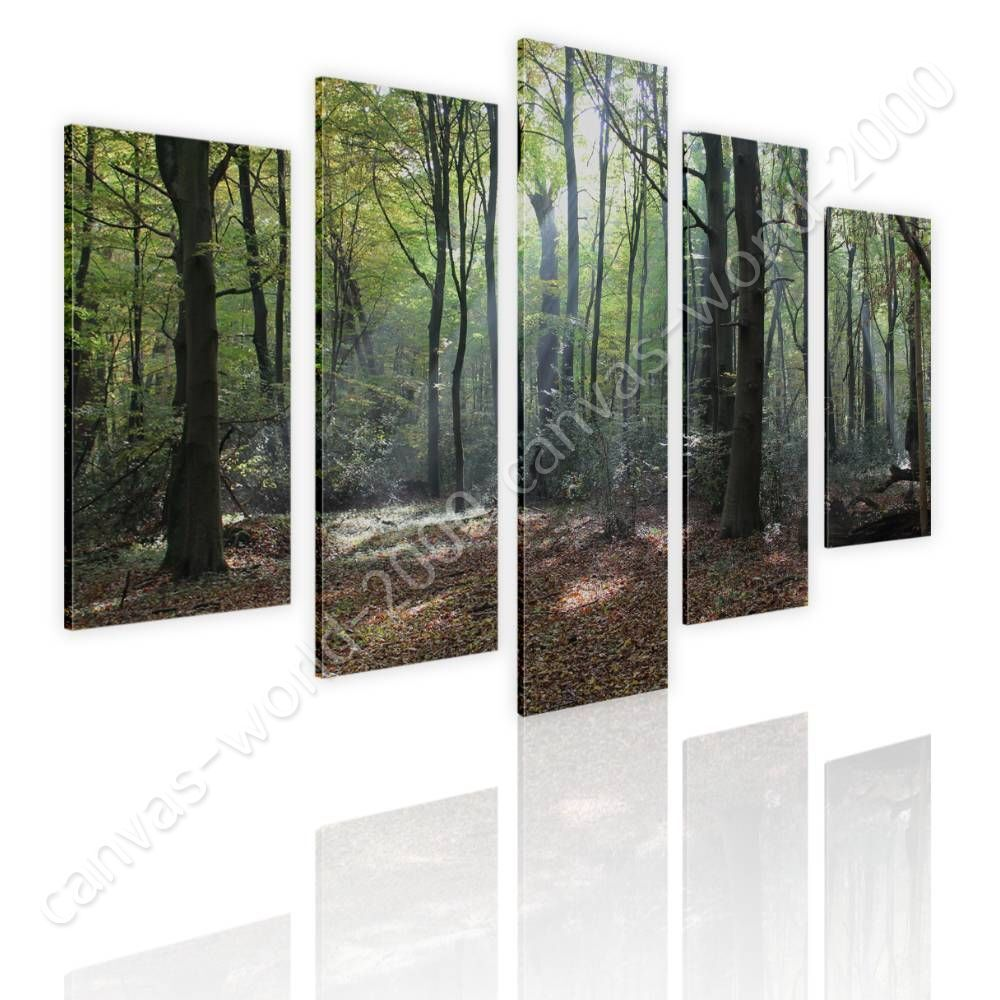 Trees In The Woods by Split 5 Panels   Canvas (Rolled)   5 Panels Wall art HD