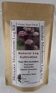 Shiitake Mushroom (miss Happiness strain) Growing Log Kit